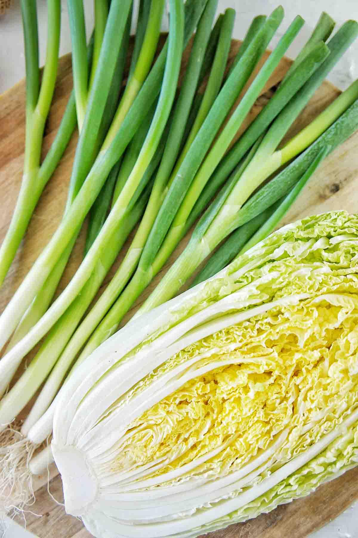 Vegan Schnitzel Salad Recipe 01