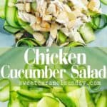 Chicken Cucumber Salad on blue plate