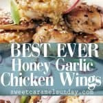 Honey Garlic Chicken Wings with text overlay