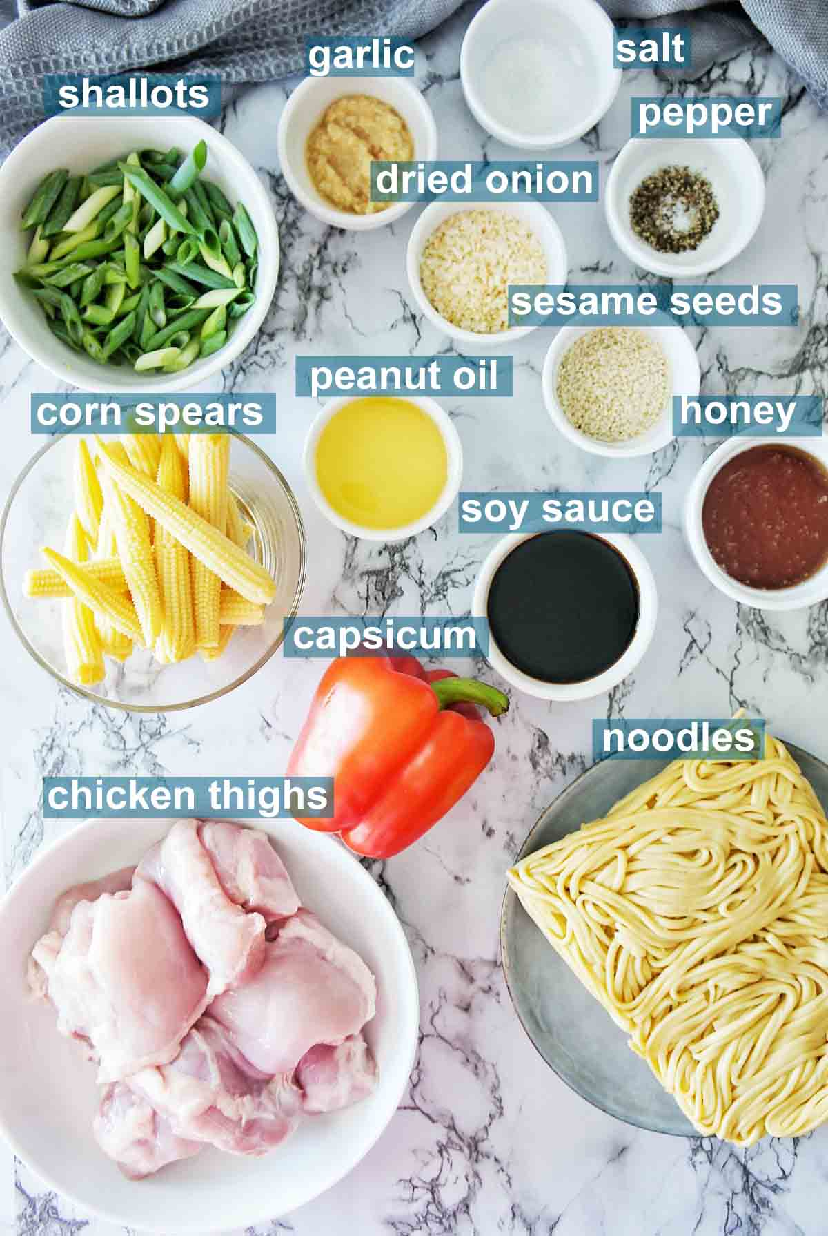 Ingredients for chicken hokkien noodle stir fry with text overlay