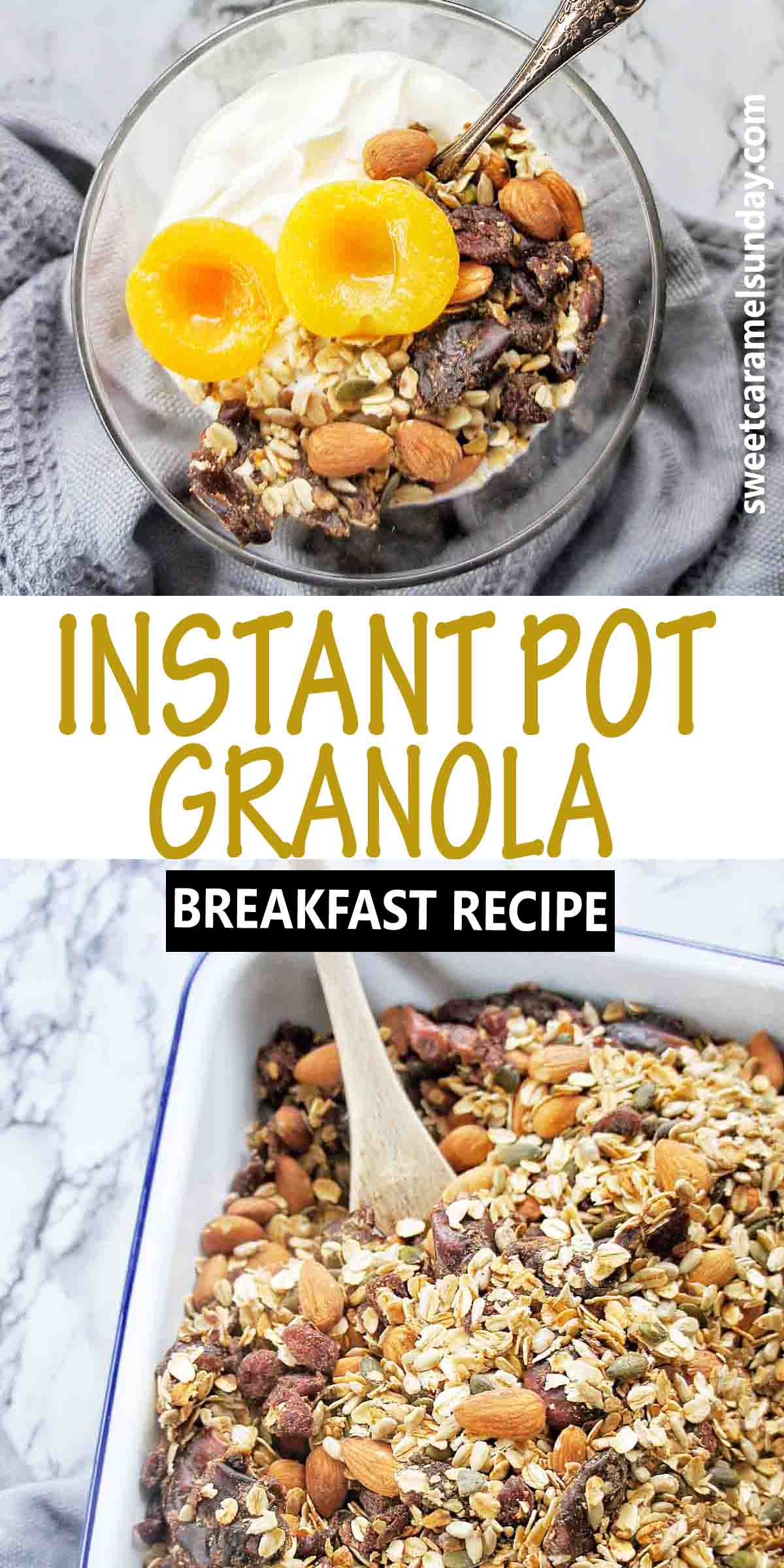 Instant Pot Granola with text over lay