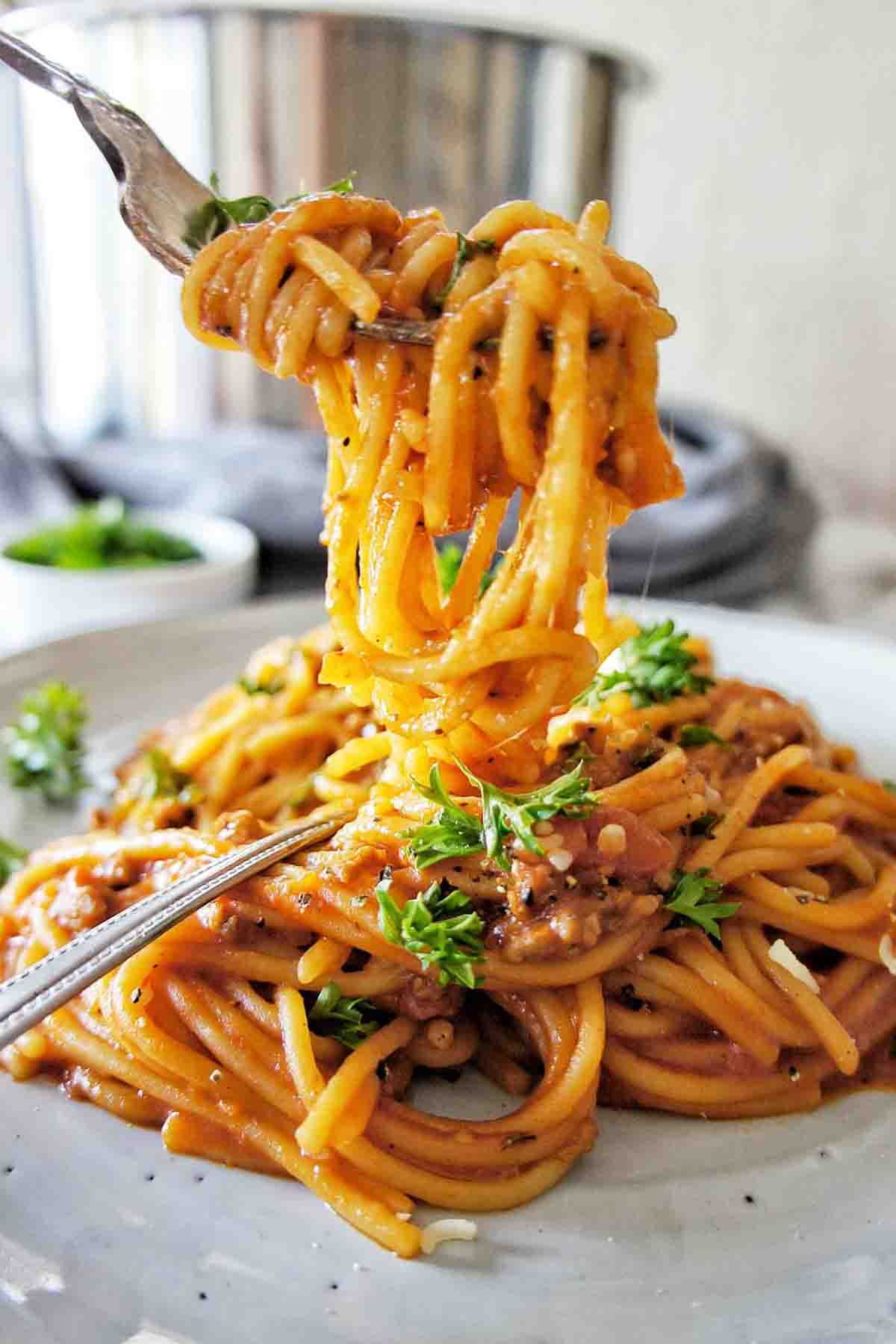 Fork twirled above a plate of spaghetti bolognese