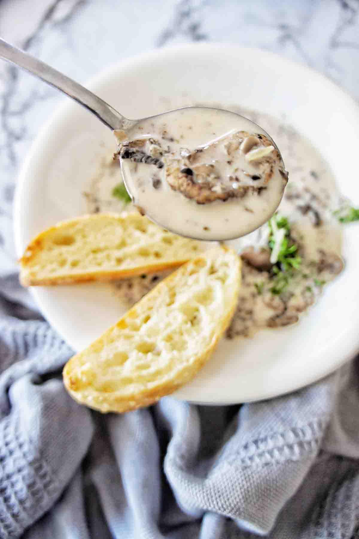 Spoon of mushroom soup held above bowl of same