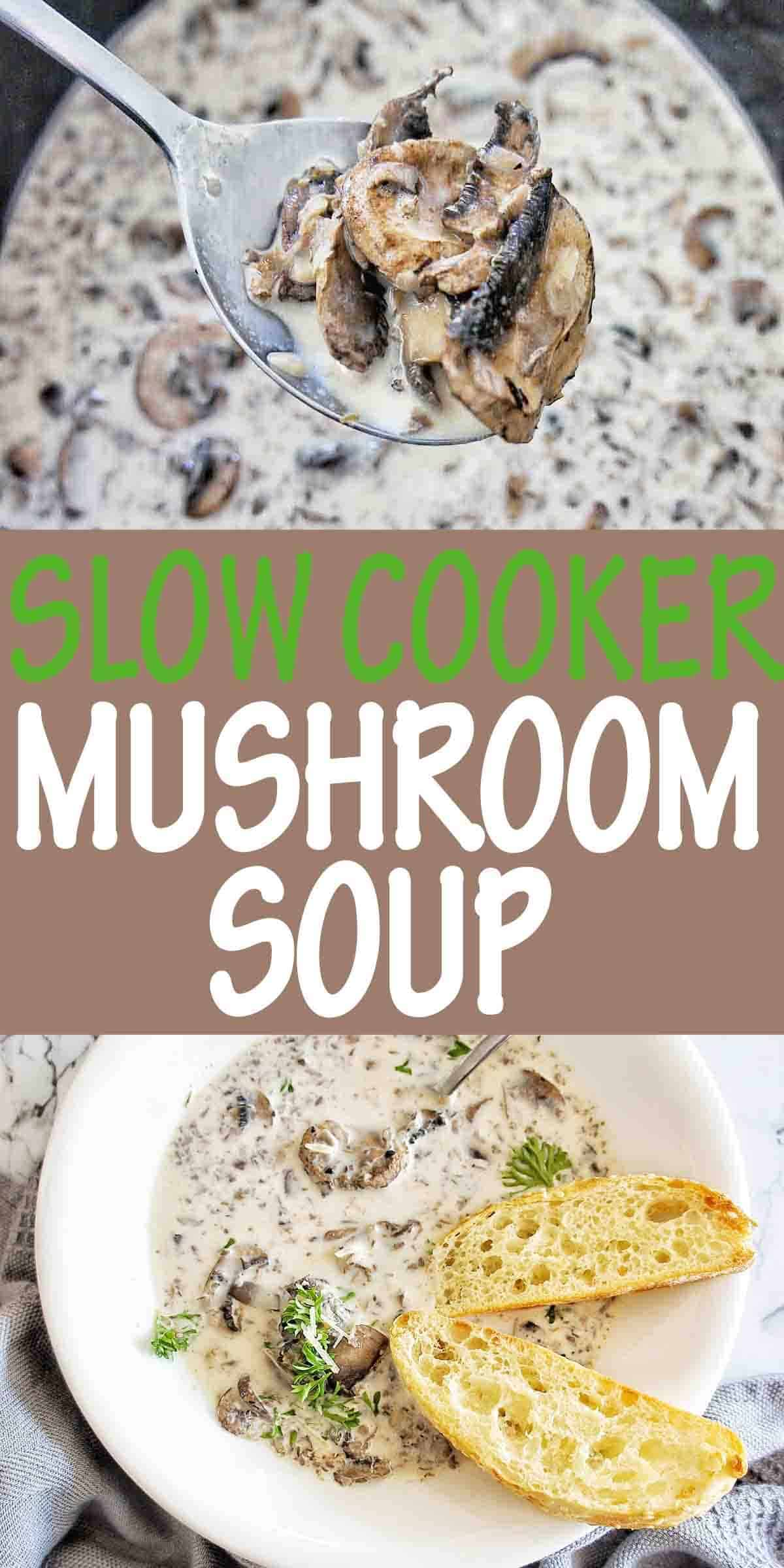 Slow Cooker Mushroom soup with text over lay